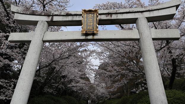 宗忠神社・第一鳥居