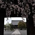 妙覚寺・大門2