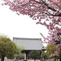 妙覚寺・祖師堂