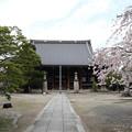 妙顕寺・本堂1