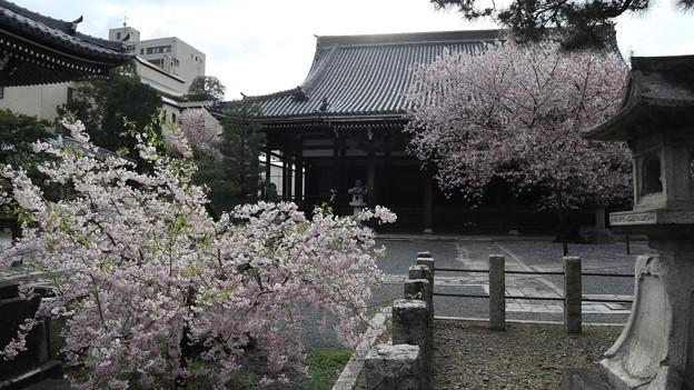 本法寺・本堂