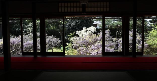 長慶院・額縁庭園(本堂から)1