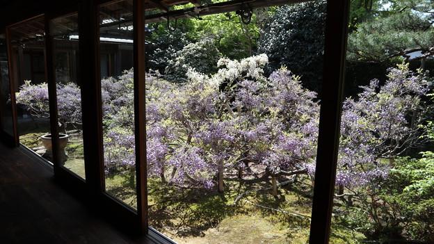 長慶院・本堂縁側から庭園2