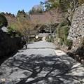 勝林院への参道1