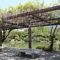 京セラ美術館・庭園1