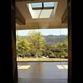京セラ美術館より庭園3