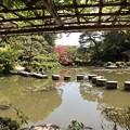 平安神宮・中神苑5