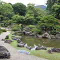 三宝院庭園(亀島・鶴島)1