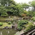 三宝院庭園(西側・純浄観より)1