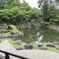 三宝院庭園(純浄観より三段の滝)1