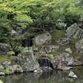 三宝院庭園(純浄観より三段の滝)2