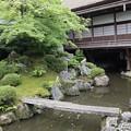 三宝院・純浄観4