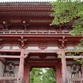 醍醐寺・仁王門2