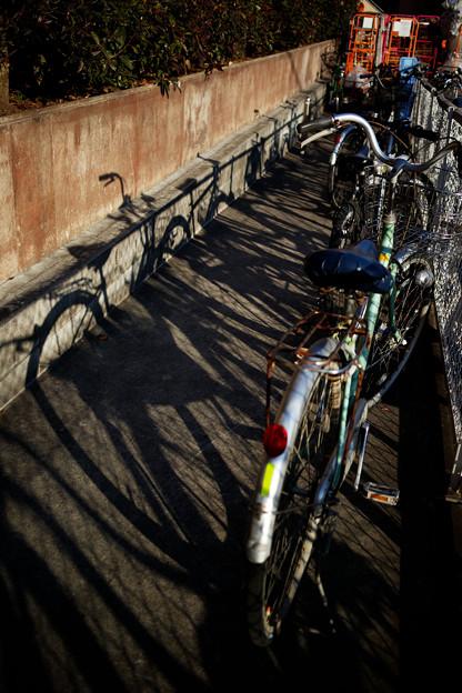 自転車の影