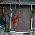 Photos: 吊るす