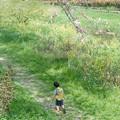 Photos: 小さな冒険
