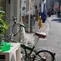 Photos: 緑の象