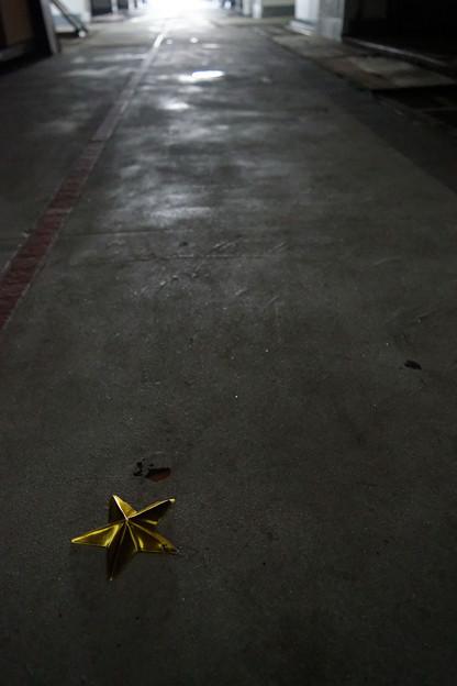地面に堕ちた星