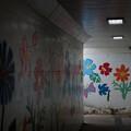 Photos: 地下道の花