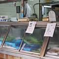鮭としじみ