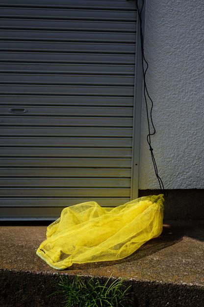 黄色いネット
