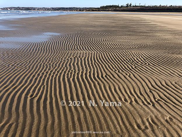 2021年2月28日、一宮海岸