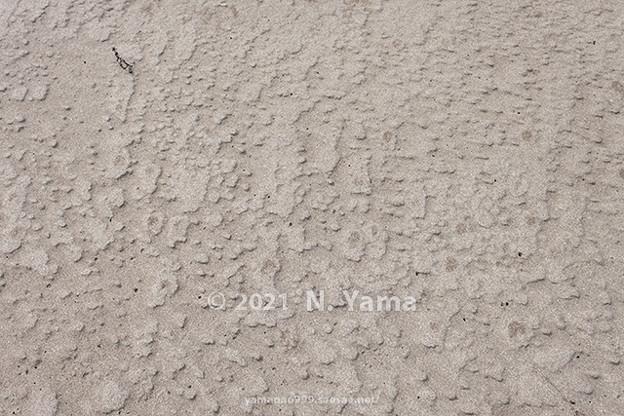 2021年3月7日、粟津海岸風景