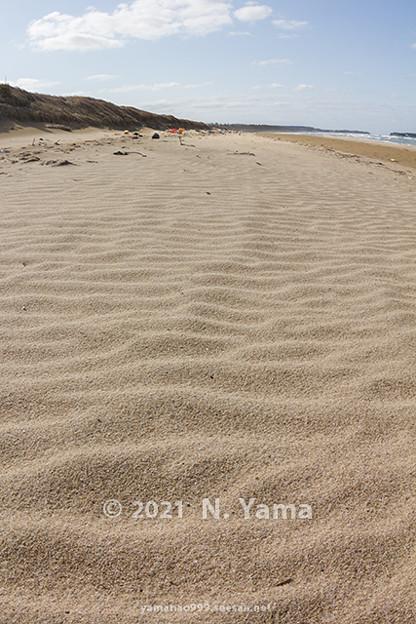 2021年3月14日、甘田海岸