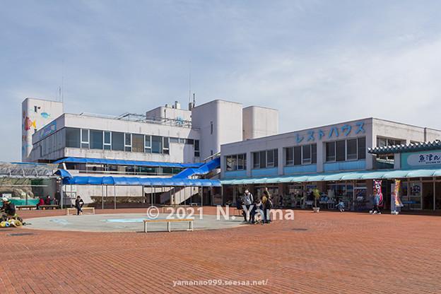 2021年3月27日、魚津水族館