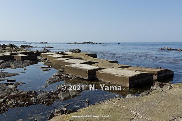 yamanao999_2992