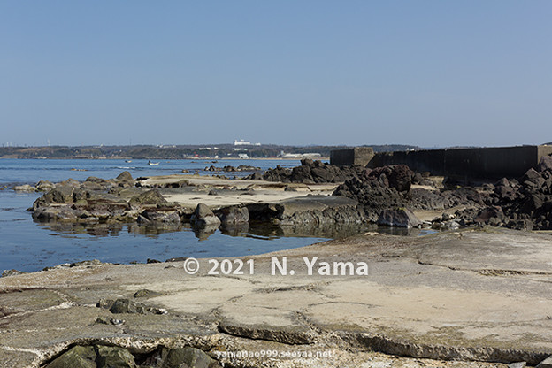 yamanao999_2993