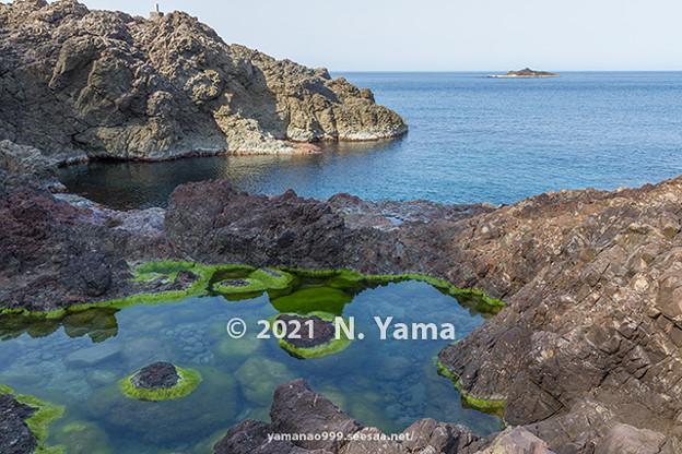 yamanao999_3010