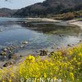 Photos: 2021年4月3日、輪島市折戸地区風景