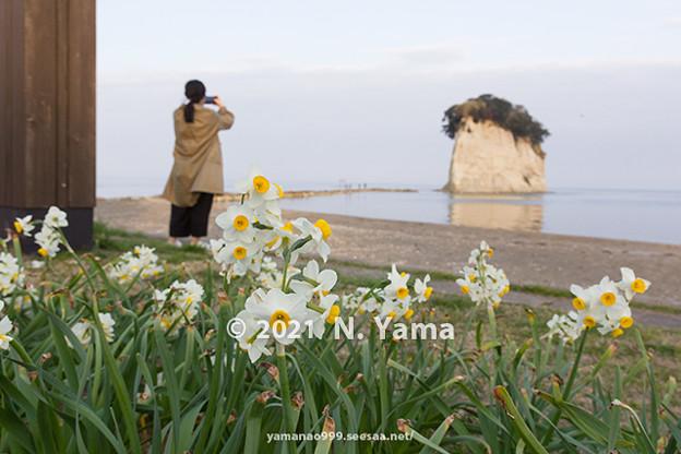 yamanao999_3012