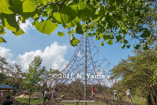 2021年9月24日、桜ヶ池公園