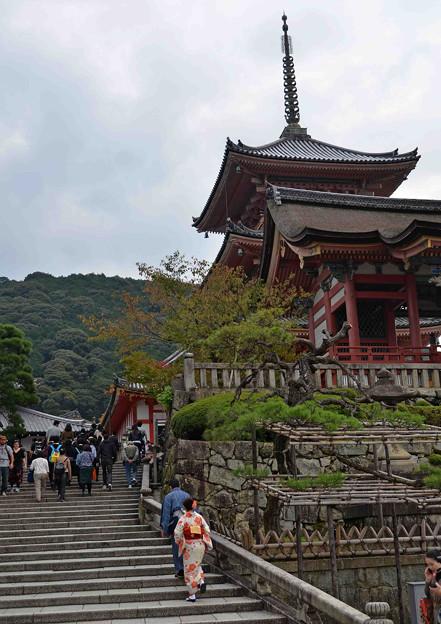 清水寺に参る