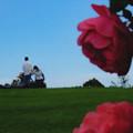 Photos: 花園の奥