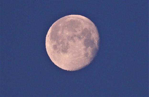 朝のお月さん