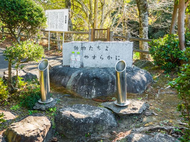 野鳥の森 動物たちの供養碑