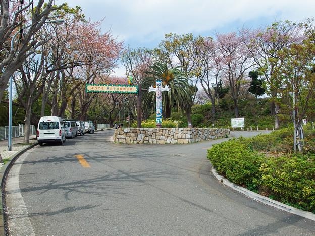 夢見ヶ崎動物公園 正面入口