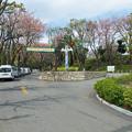 Photos: 夢見ヶ崎動物公園 正面入口
