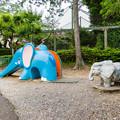 Photos: ゾウの滑り台と像