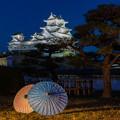 姫路城 和傘幻想 華灯り 5