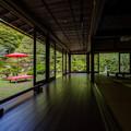 Photos: 旧竹林院 新緑 2