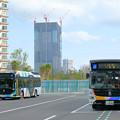 晴海BRTターミナル…東京BRT(2)