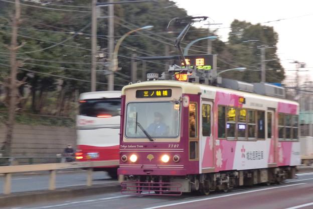 夕方の明治通りを走る三ノ輪橋行き(2)