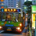 夕暮れの赤羽橋駅前バス停 2011.9.17