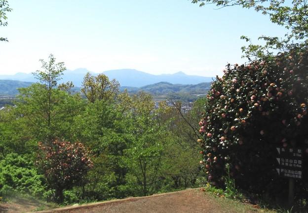 27 展望台より箱根外輪山