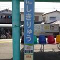 Photos: にしきりゅう