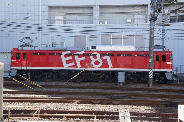 EF81-95